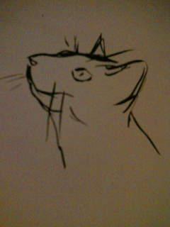 筆絵 猫シリーズ