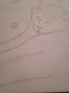 鉛筆絵 猫シリーズ
