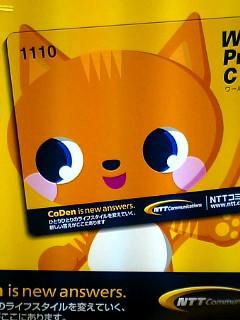 ポスターの中の猫 9