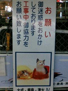 ポスターの中の猫 7 看板