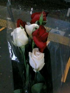 拾ったバラの花束