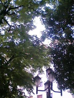 空と緑が救い