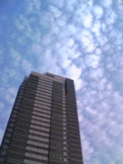 赤ちゃん・雲・映画「パンズ ラビリンス」