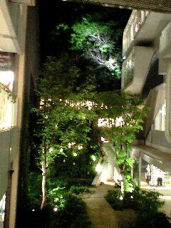 """4/29(火)加藤崇之""""FIS""""LIVE @入谷浅草なってるハウス"""