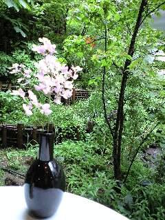 雨上がりの庭でランチ
