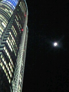 """本日、6/21(土)Shoomy """"SOL""""LIVE @なってるハウス"""