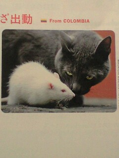 びっくりした猫と鼠の話