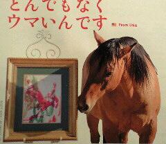 アッと驚く、馬のチョラ