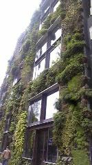 武蔵境駅・緑のアーチとパリ・緑の壁