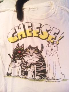 好きなよれよれTシャツ