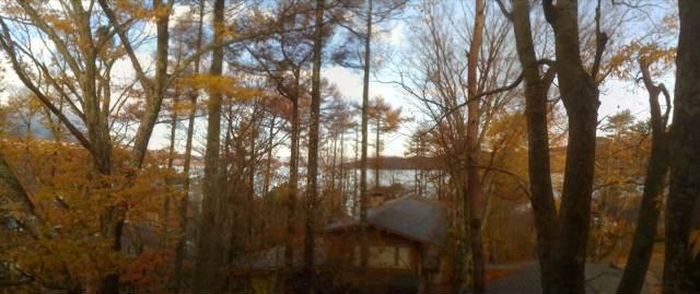 朝の湖畔ビュー