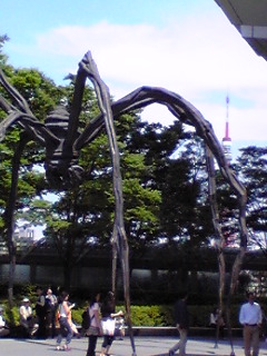ヒルズの蜘蛛