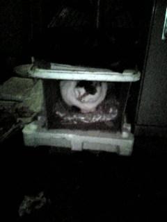 野良猫ハウス